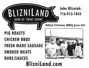 bliz_land